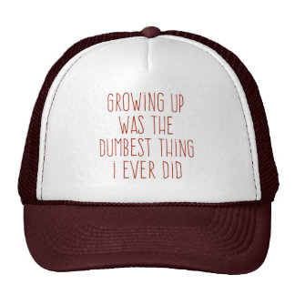 The Dumbest Thing I Ever Did Mesh Hat