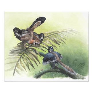 The Earliest Bird Photo Print