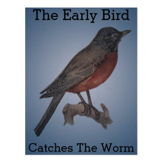 The Early Bird Catches The Worm Postcard