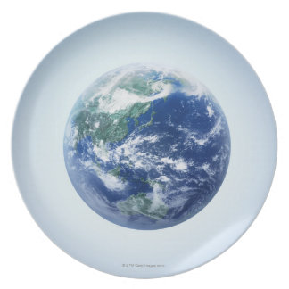 The Earth 9 Plate
