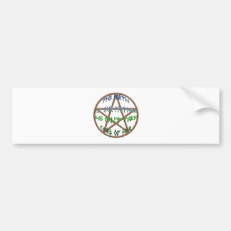 the earth is our mother bumper sticker
