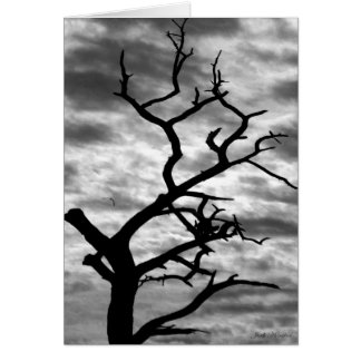 The Edge of Darkness Greeting Card