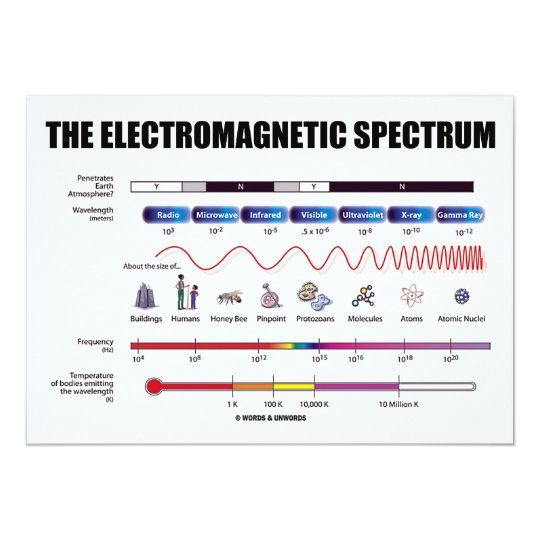 The Electromagnetic Spectrum (Physics) Card