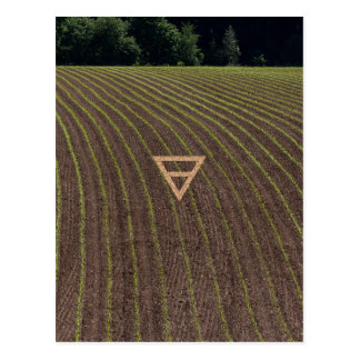 The Element Earth Symbol Postcard