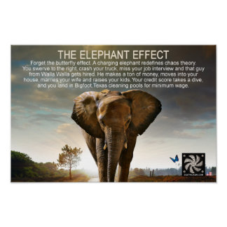 THE ELEPHANT EFFECT POSTER
