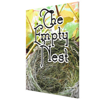 The Empty Nest Stretched Canvas Prints