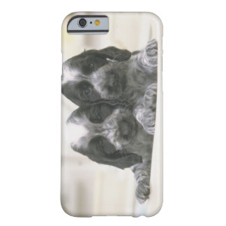 The English Cocker Spaniel is a breed of dog. It Barely There iPhone 6 Case