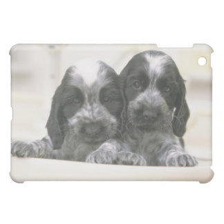 The English Cocker Spaniel is a breed of dog. It iPad Mini Covers