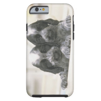 The English Cocker Spaniel is a breed of dog. It Tough iPhone 6 Case