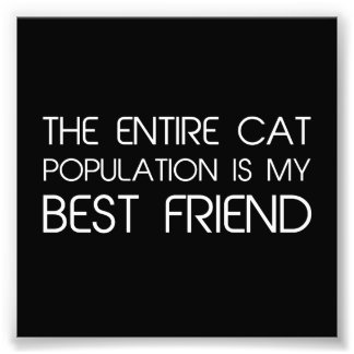 The Entire Cat Population Is My Best Friend Photo