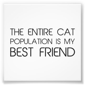 The Entire Cat Population Is My Best Friend Photographic Print