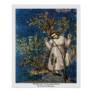 The Entrance To Jerusalem  By Giotto Di Bondone Poster