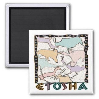 The Etosha Magnet
