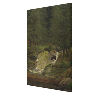 The Evergreens by the Waterfall Canvas Print