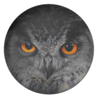 The Evil Eyes. ( Eagle Owl, Bubo Bubo) Party Plates