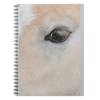 The eye of a Haflinger Rare Breed Pony Notebook
