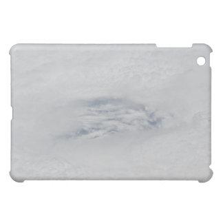 The eye of Hurricane BIll Case For The iPad Mini