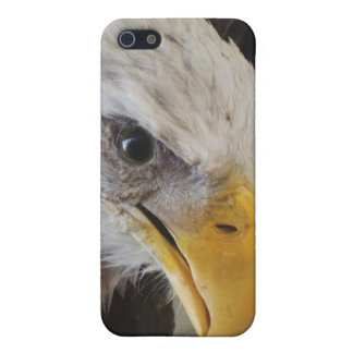 The Eye of the Eagle Case For iPhone 5