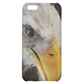 The Eye of the Eagle iPhone 5C Cases