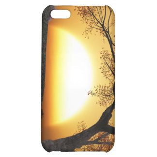 The Fabled Sun iPhone 5C Cases