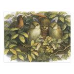 The Fairyland,1870 Fairy With Owls