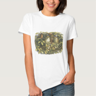 The Fairyland,1870 Fairy With Owls T-shirts