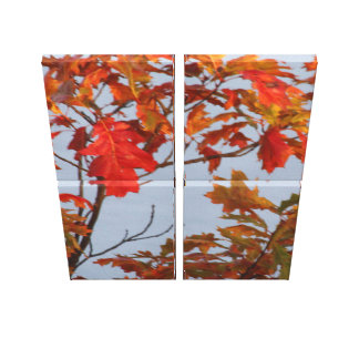 The Fall Season Canvas Print