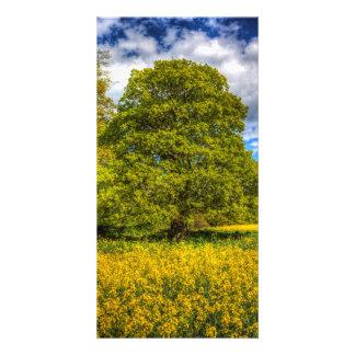 The Farm Tree Custom Photo Card
