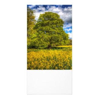 The Farm Tree Customized Photo Card