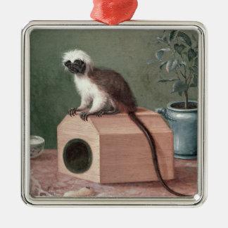 The Favourite Monkey of Carl Linnaeus Christmas Ornament