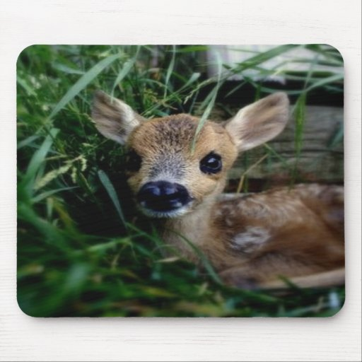 The Fawn Mouse Pads