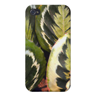 The Feather Plants Speck iPhone Case Cover For iPhone 4