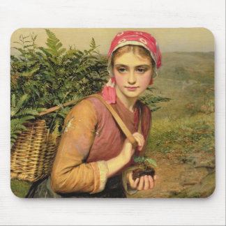 The Fern Gatherer Mouse Pad