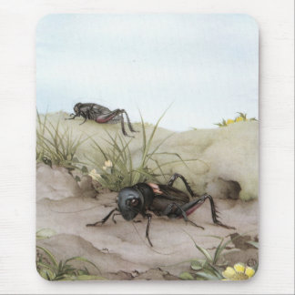 THE FIELD CRICKET MOUSE PAD