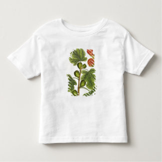 The Fig Tree, plate 125 from 'A Curious Herbal', p Toddler T-Shirt