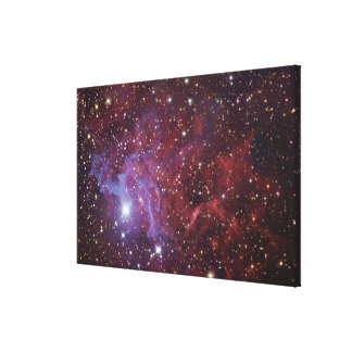The Flaming Star Nebula IC405 Canvas Print