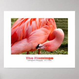 The Flamingo poster print