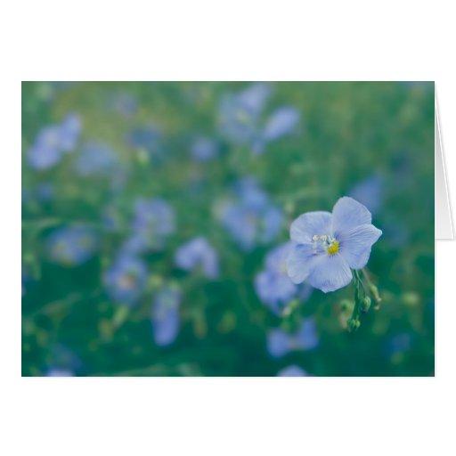 The Flax Fairy Card