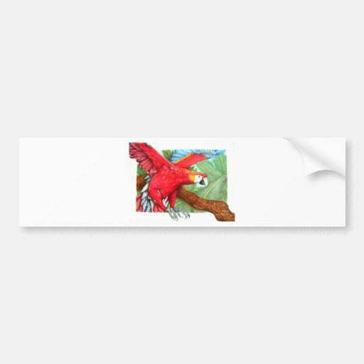 The Flight of the Macaw by Derrick Rathgeber Bumper Stickers