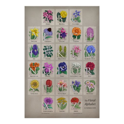 The Floral Alphabet Poster