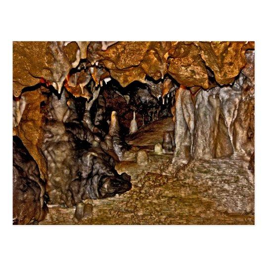 The Florida Caverns I. Postcard