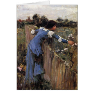 The Flower Picker Cards