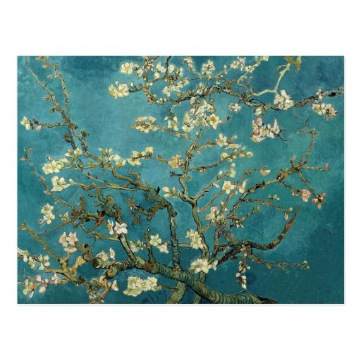 The flower the branch of the almond which blooms postcards