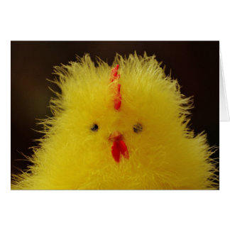 The Fluffy Chick Greeting Card