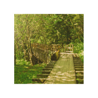 The Flume Trail wood print