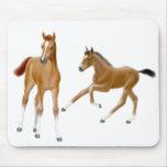 The Foals Mousepad