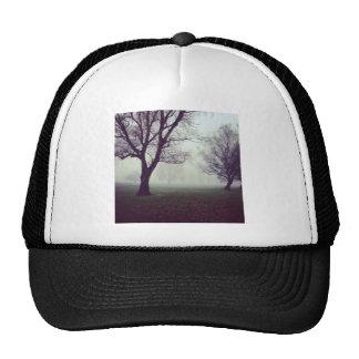 The fog cap