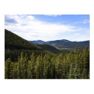 The foothills of Alberta Canada. Postcard