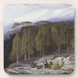 The Forest of Valdoniello, Corsica, 1869 (oil on c Coasters