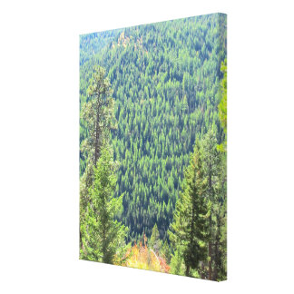 The Forest Wrapped Canvas